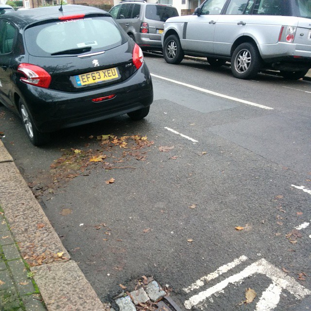 EF63 XEU is a Selfish Parker