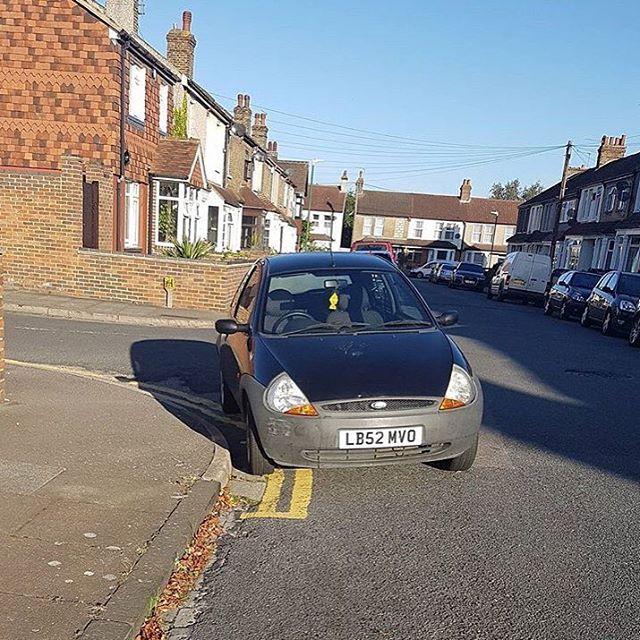LB52 MVO displaying Selfish Parking