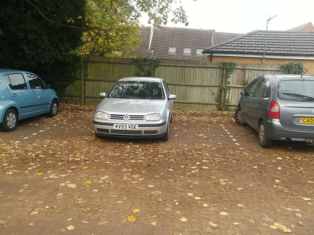 KV53 VGE displaying Selfish Parking