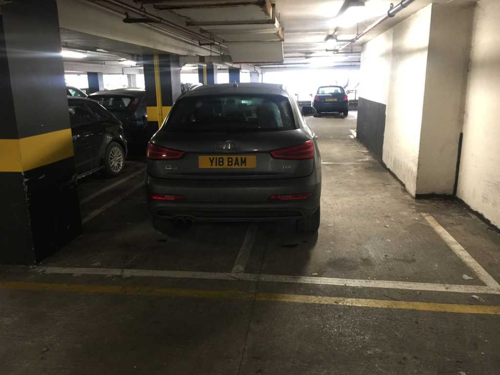 Y18 BAM is a Selfish Parker