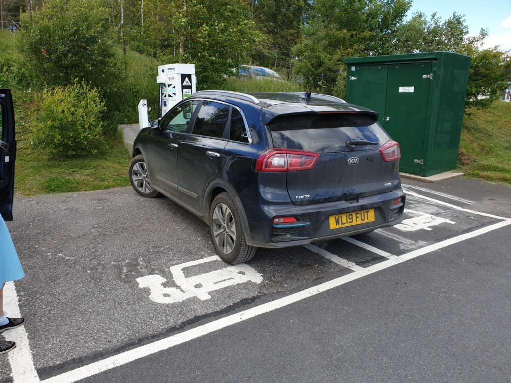 WL19 FUT displaying Selfish Parking