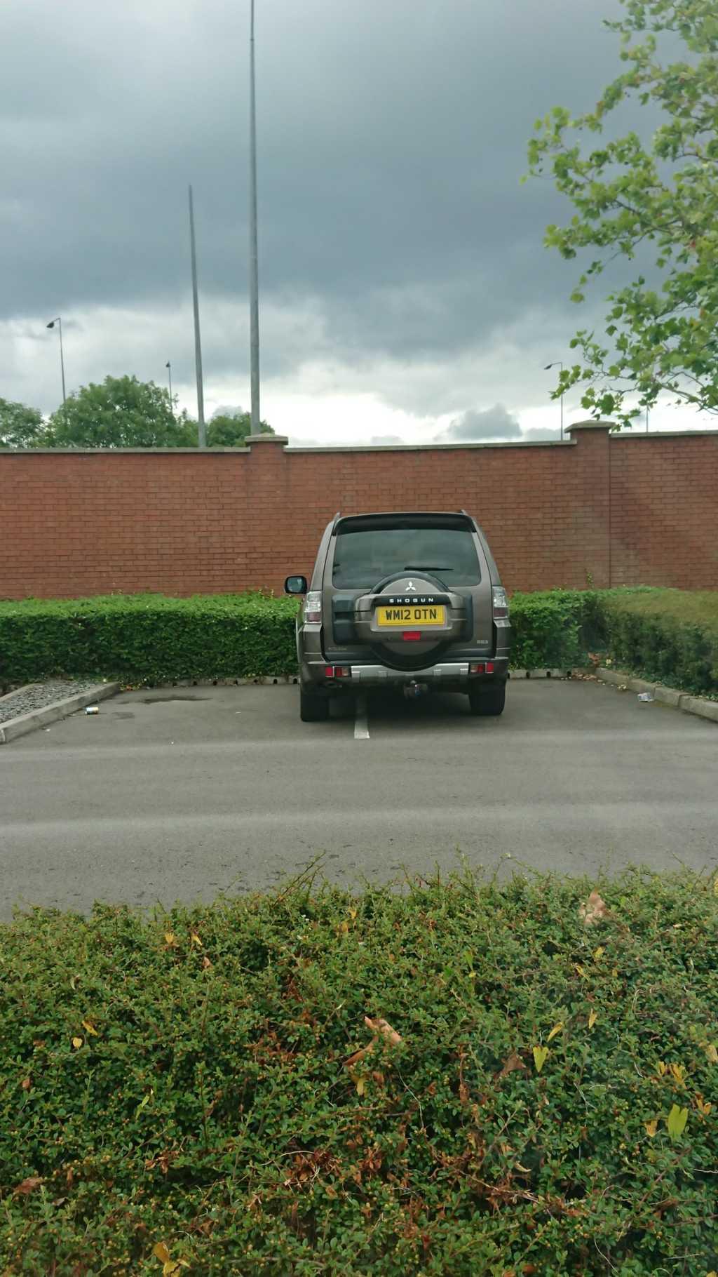 WM12 OTN displaying Selfish Parking