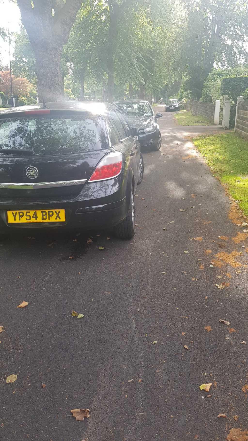 YP54 BPX is a crap parker