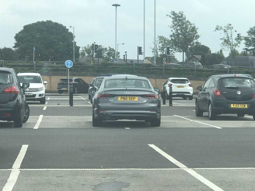 P80 SEP is a Selfish Parker